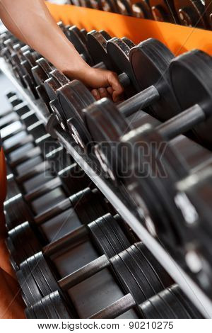 Variety of barbells in sport club