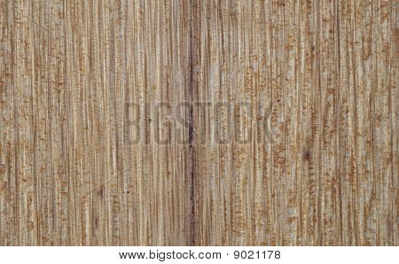 Red Cedar Background