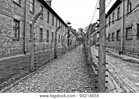 Wires And Barraks In Auschwitz I