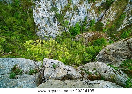 Rocky Ravine On Mountains