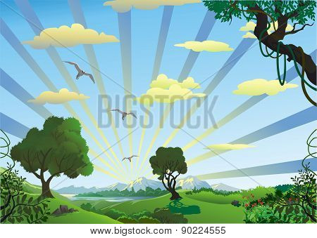 Landscape - Trees In The Morning On The Hill [