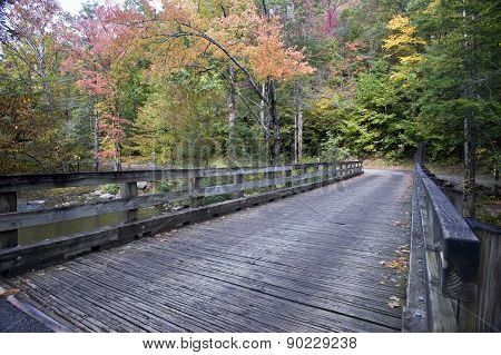 Old Wooden Bridge In Woods