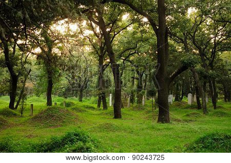 Confucius Family Cemetery