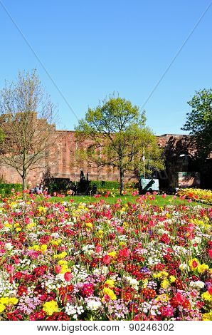 Shrewsbury castle and flowerbed.