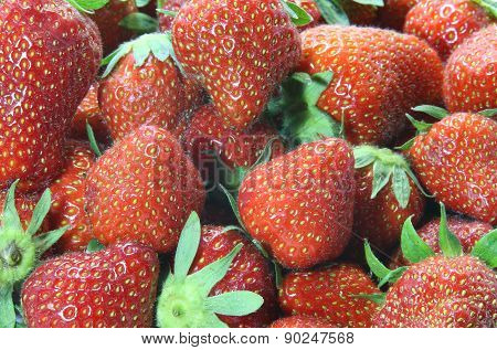 Temptations: Background Of Red Ripe Strawberries