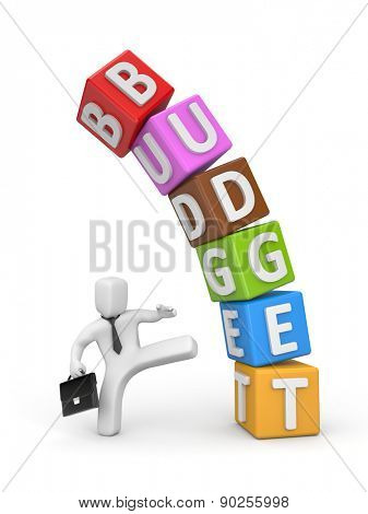 The businessman does not agree with the budget
