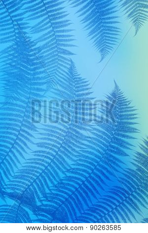 colored blue palm leaves