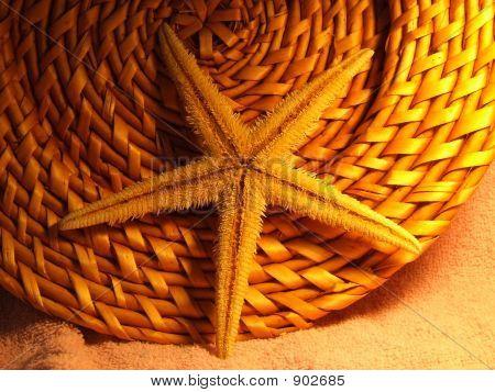 Starfish Basket