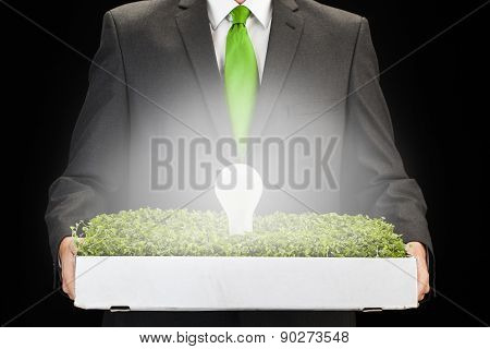 Man Holding Box With Grass And Lightbulb