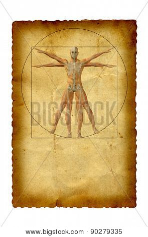 Concept or conceptual vitruvian human body drawing on old paper background