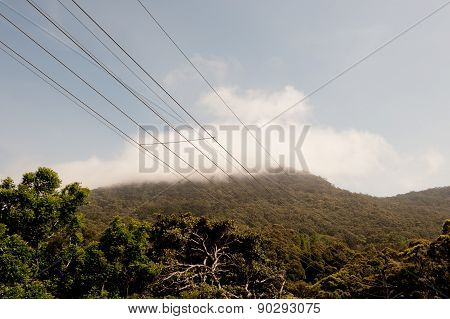 Powerlines Nature Background