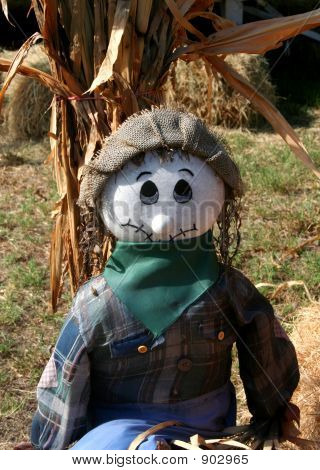 Scarecrow In Plaid