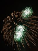 foto of night-blooming  - spectacular beautiful bright fireworks with three green fire flowers bloom in the night black sky vertically - JPG