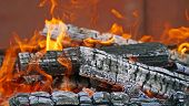 picture of firewood  - burning firewood in mongale for barbecue outdoors - JPG