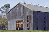 stock photo of tobacco barn  - tobacco leaves hanging in a barn to dry - JPG