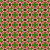 picture of parallelogram  - background pattern made from piece of Karanda fruit - JPG