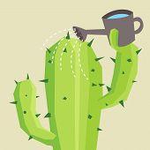foto of cactus  - Cactus watering him self  - JPG