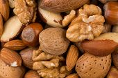 stock photo of mixed nut  - Variety of Mixed Nuts as a background  - JPG