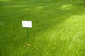 pic of lawn grass  - Lawn with green grass and white plaque on the lawn - JPG