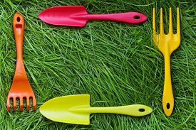 stock photo of spade  - Set of gardening tools on green grass background - JPG