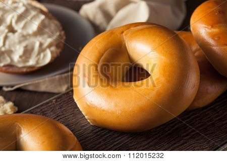 Homemade Plain Egg Bagels
