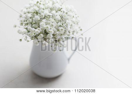 Soft white baby's breath flowers (Gypsophila) in white vase