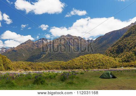 Beautiful Mountains And Tramper's Tent In Fiordland National Park, New Zealand