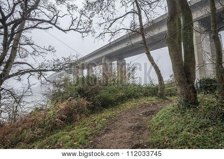 Bridge In The Misty Morning