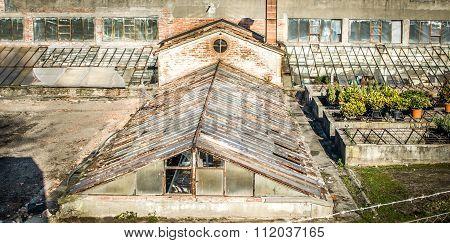 Old Abandoned Greenshouse