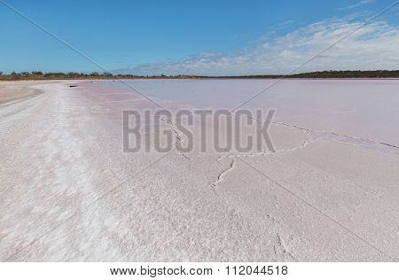 Pink Salt Crust. Lake Becking, Australia