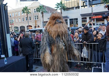 LOS ANGELES - DEC 17:  Chewbacca at the Australian Star Wars fans get married in a Star Wars-themed wedding at the TCL Chinese Theater on December 17, 2015 in Los Angeles, CA