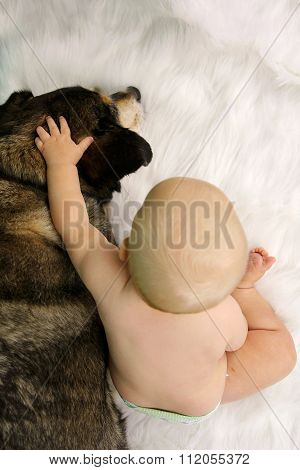 Baby Reaching Hand And Petting Hugging German Shepherd Dog