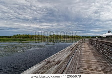 Wooden Boardwalk Florida Wetlands