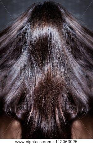 beautiful dark shiny long woman hair in motion, back view, studio shot