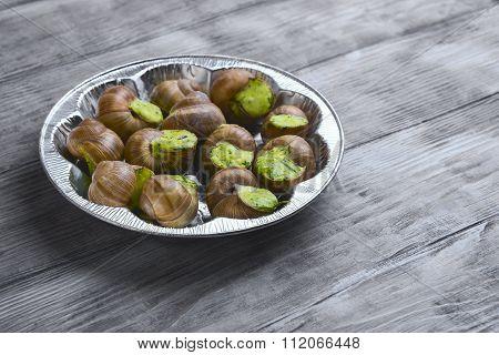 Burgundy Snail On A Plate