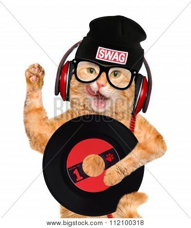 Music headphone vinyl record cat.