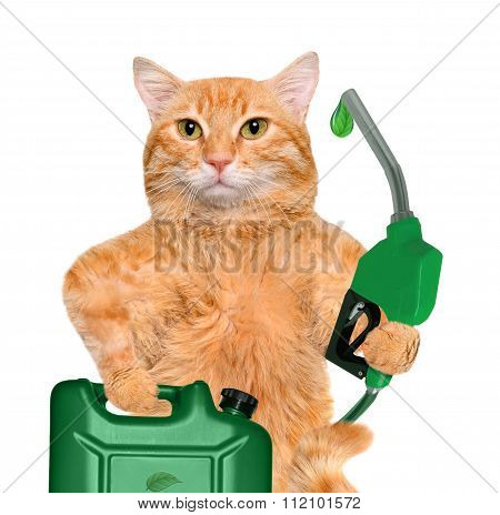 Cat's hand using fuel nozzle with a drop of eco-friendly fuel.
