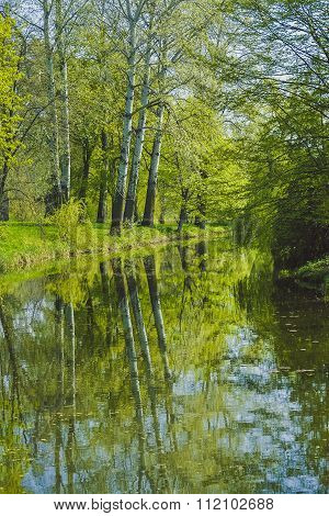 tall trees on the banks, reflected in a lake