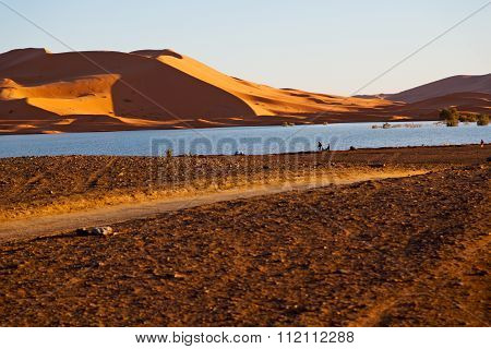 Sunshine In The Lake Yellow  Desert Of Morocco  And     Dune