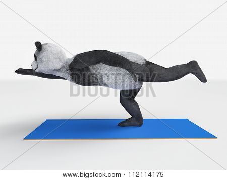 Personage Character Animal Bear Panda Yoga Stretching Exercises Different Postures And Asanas
