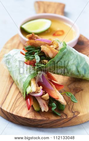 Mini asian canapes, fresh rice paper spring roll appetizers with grilled chicken and vegetables