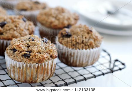 Fiber rich bran muffin, nutritious healthy snacks
