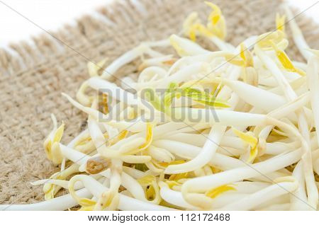 Portion Of Preserved Soy Sprouts.