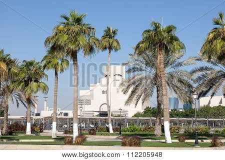 Palm Trees At The Corniche In Doha, Qatar