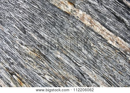 Schist Rock Background