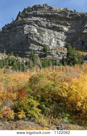 A Pronounced Cliff Rises Above The Fall Foliage In Provo Canyon
