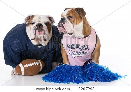 bulldogs dressed like football player and cheerleader
