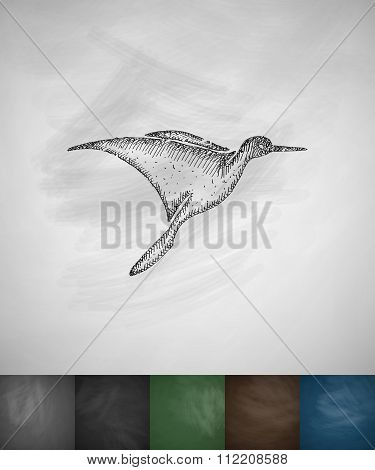 colibri icon. Hand drawn vector illustration