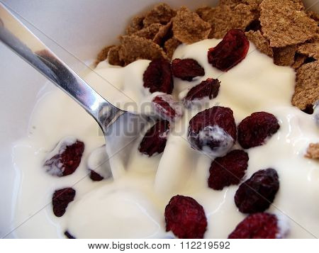 Bran Flakes, Yoghurt and Cranberries