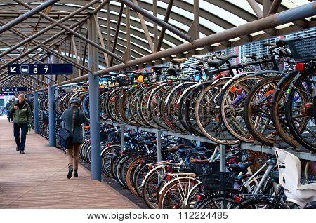 Green Transport. Bike Parking